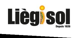 Liègisol